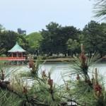 本日の大濠公園